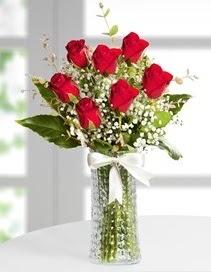Cam vazoda 7 adet kırmızı gül  Kırşehir çiçekçi telefonları