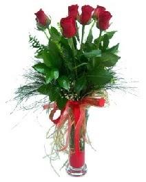 vazo içerisinde 5 kırmızı gül  Kırşehir çiçek mağazası , çiçekçi adresleri