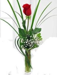 Cam içerisinde 1 kırmızı gül  Kırşehir çiçek yolla , çiçek gönder , çiçekçi
