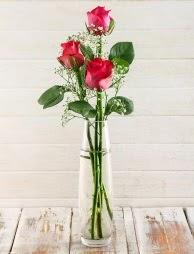 Cam içerisinde 3 kırmızı gül  Kırşehir çiçek gönderme