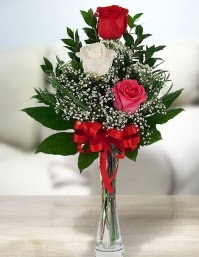 Camda 2 kırmızı 1 beyaz gül  Kırşehir çiçek satışı