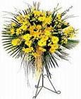 Kırşehir kaliteli taze ve ucuz çiçekler  Sari kazablanka Ferforje