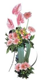Kırşehir çiçek mağazası , çiçekçi adresleri  Pembe Antoryum Harikalar Rüyasi