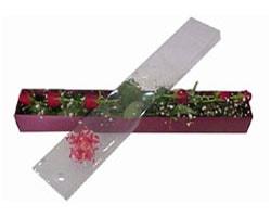 Kırşehir uluslararası çiçek gönderme   6 adet kirmizi gül kutu içinde