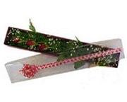 Kırşehir çiçek , çiçekçi , çiçekçilik  3 adet gül.kutu yaldizlidir.