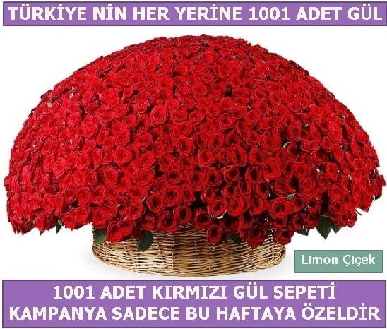 1001 Adet kırmızı gül Bu haftaya özel  Kırşehir online çiçekçi , çiçek siparişi