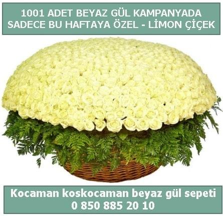 1001 adet beyaz gül sepeti özel kampanyada  Kırşehir çiçek yolla , çiçek gönder , çiçekçi