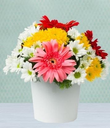 Seramik Vazoda Gelbera ve Papatya  Kırşehir çiçek gönderme sitemiz güvenlidir