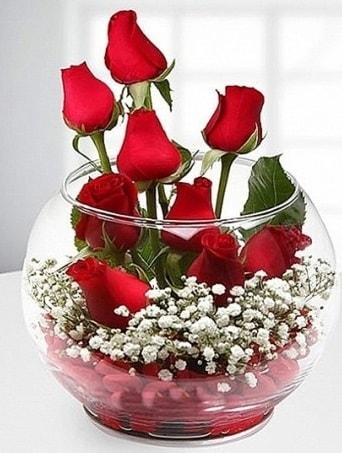 Kırmızı Mutluluk fanusta 9 kırmızı gül  Kırşehir hediye çiçek yolla