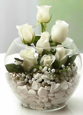Beyaz Mutluluk 9 beyaz gül fanusta  Kırşehir hediye çiçek yolla