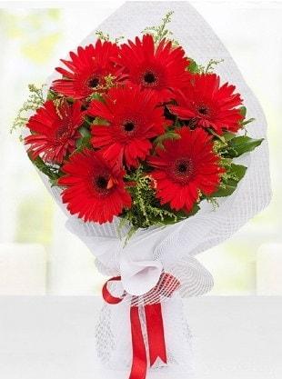 Kırmızı Gelbera Buketi  Kırşehir internetten çiçek satışı