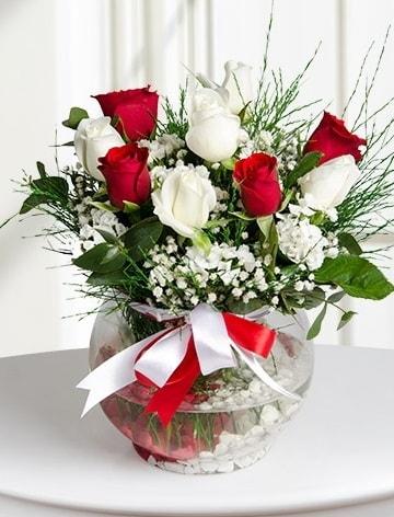 Aşk Küresi  5 beyaz 5 kırmızı gül fanusta  Kırşehir çiçekçi mağazası