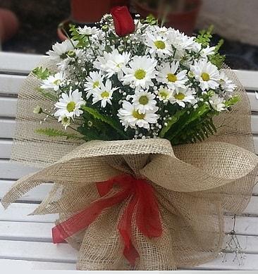 Papatya 1 adet kırmızı gül buketi  Kırşehir çiçek siparişi sitesi
