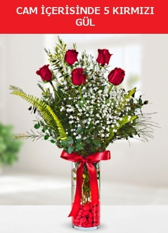 Cam içerisinde 5 adet kırmızı gül  Kırşehir hediye çiçek yolla