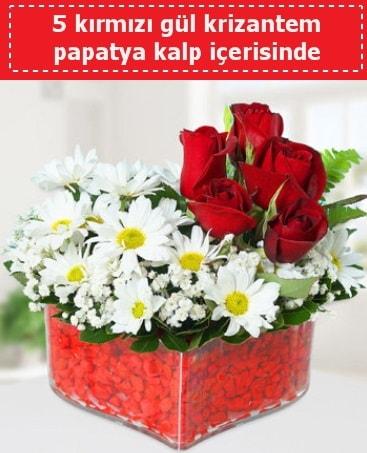 mika kalp içerisinde 5 kırmızı gül papatya  Kırşehir çiçek gönderme sitemiz güvenlidir