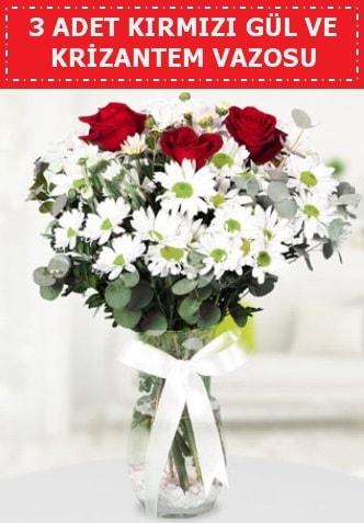 3 kırmızı gül ve camda krizantem çiçekleri  Kırşehir çiçek gönderme sitemiz güvenlidir