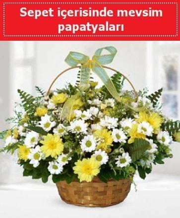 Sepet içerisinde mevsim papatyaları  Kırşehir çiçek satışı