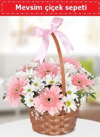 Mevsim kır çiçek sepeti  Kırşehir çiçekçi telefonları