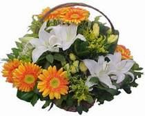 Kırşehir güvenli kaliteli hızlı çiçek  sepet modeli Gerbera kazablanka sepet