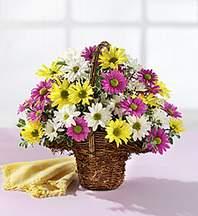Kırşehir çiçek siparişi sitesi  Mevsim çiçekleri sepeti